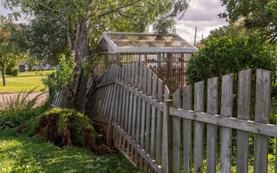 Landscaping Your Backyard for Hurricane Season